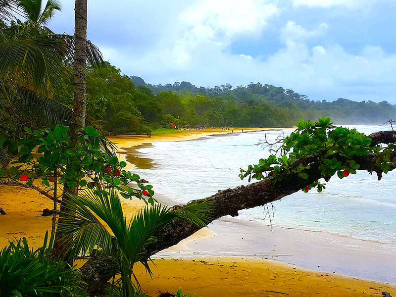 Panama Reiseangebote