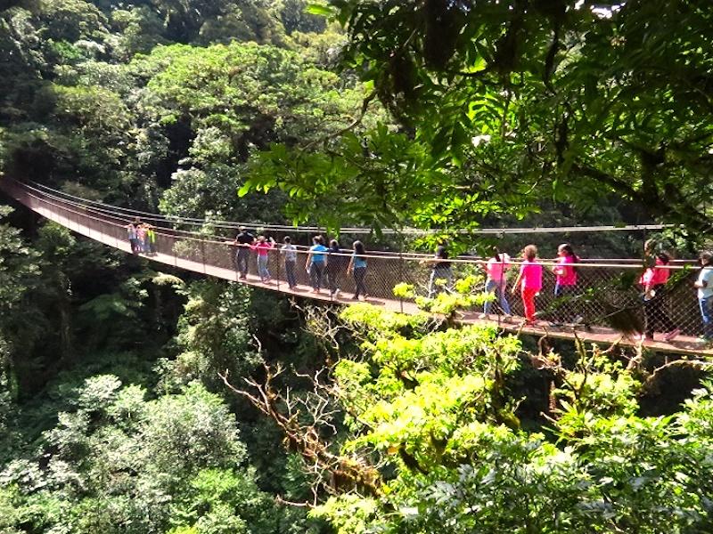 Von Panama nach Kolumbien Hängebrücke