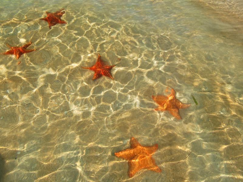 Panama Star Beach