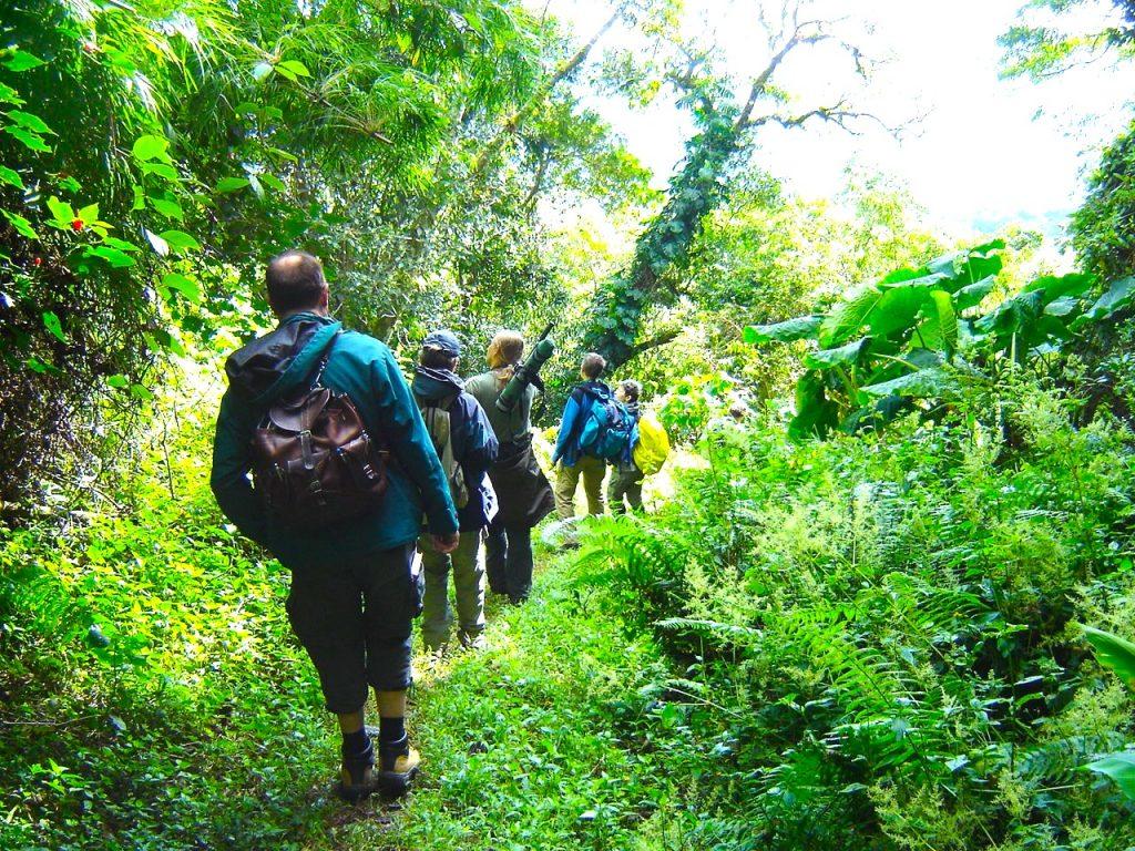 Mietwagenreise das grüne Panama Wandern